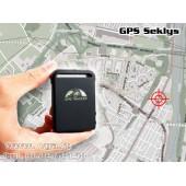 GPS Seklys + Sekimo serveris